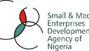 The Small and Medium Enterprises Development Agency of Nigeria (SMEDAN)